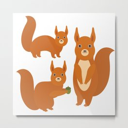 Set of funny red squirrels with fluffy tail with acorn  on white background Metal Print