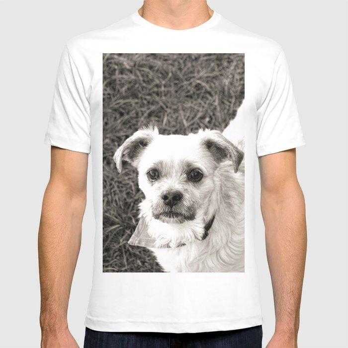 Fudge black and white T-shirt