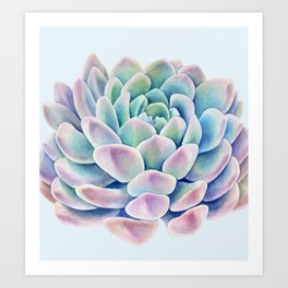 succulent watercolor 11 Art Print