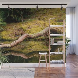 Reflections on the pond Wall Mural