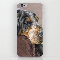the hound iPhone & iPod Skins featuring Hound Dog by Sarahphim Art