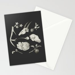 Bones and Botanical Sketches Stationery Cards