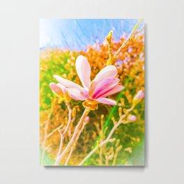 Magnolia flower Metal Print