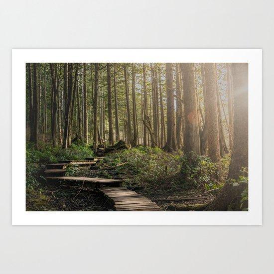 Adventure Nature Path Art Print