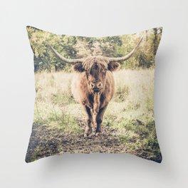 Highland scottish cow cattle long horn Throw Pillow