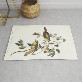 Australian Bell Bird (Myzantha melanophrys) illustrated by Elizabeth Gould (1804-1841) for John Goul Rug