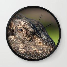 Bearded Dragon watching you Wall Clock