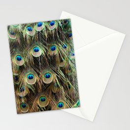 peacock III Stationery Cards