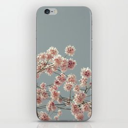 Cherry Almond Branches iPhone Skin