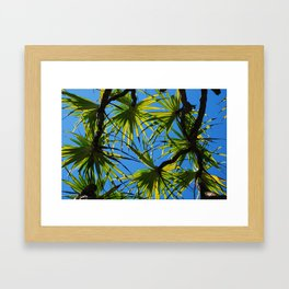 Palm Branches Framed Art Print