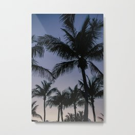 Palmstrees Key West |  Fine Art Travel Photography Metal Print