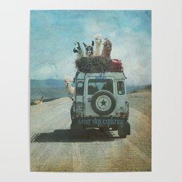 ALPACA WANDERLUST II SUMMER EDITION Poster