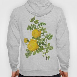 Vintage Yellow Roses [09] Hoody