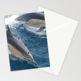 Common Dolphin Stationery Cards