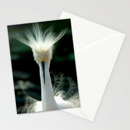 Crown of Feathers Stationery Cards