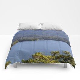 Lake Morris Comforters