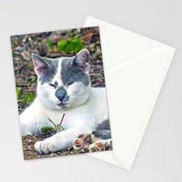 Little Mister Pants Stationery Cards