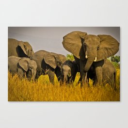 The Whole Family is Here Canvas Print