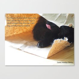 In a bag on the floor there lived a cat, or Black cat in bag Canvas Print
