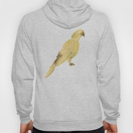 Perched Parrot – Gold Palette Hoody