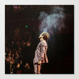 Harry on stage #3 Canvas Print