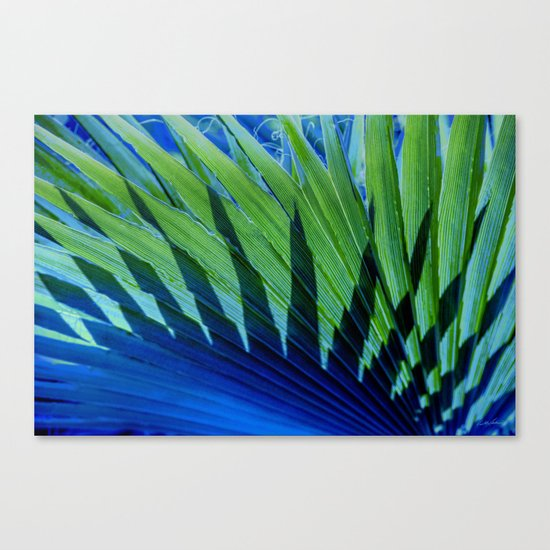 Palm Shadows Canvas Print
