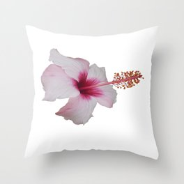 Pale Pink Hibiscus Tropical Flower No Text Throw Pillow