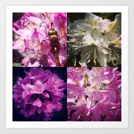 Rhododendron & dragonfly Art Print