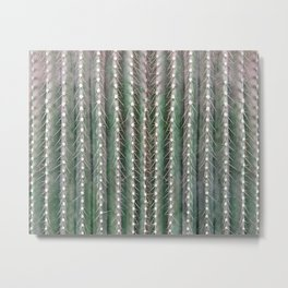CACTUS NEEDLES PATTERN, closeup green succulent Metal Print
