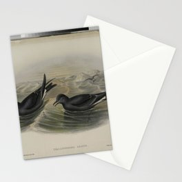 381 Thalassidroma Leachii. Forked tailed Storm Petrel Stationery Cards