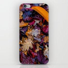 October Understory iPhone Skin