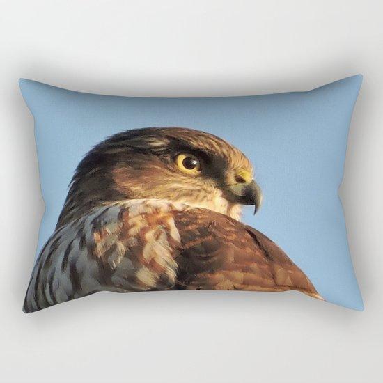 Young Cooper's Hawk Rectangular Pillow