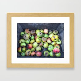 Apple Blemish Framed Art Print