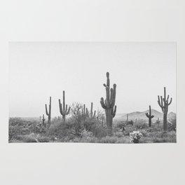 DESERT III / Scottsdale, Arizona Rug