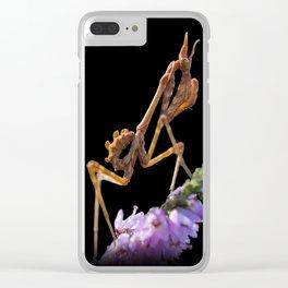 The mantis Empusa pennata Clear iPhone Case