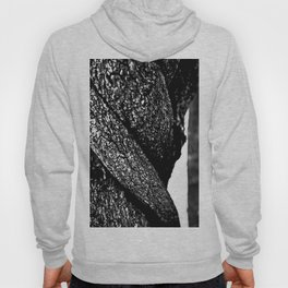silver trunk of wisteria Hoody