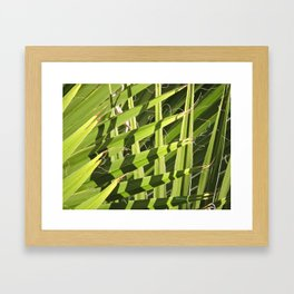 TEXTURES -- Palm Fronds Intersecting Framed Art Print