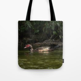 Red-faced Muscovy Duck Tote Bag