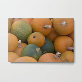 Orange and green pumpkins Metal Print