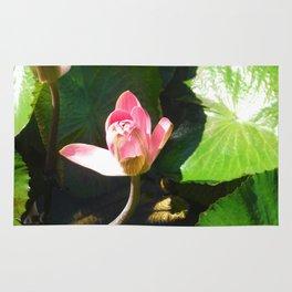Hanalei Lotus, by Mandy Ramsey, Haines, AK Rug