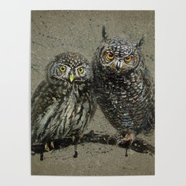 Little owl's background Poster