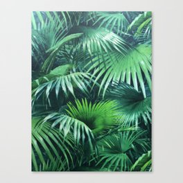 Tropical Botanic Jungle Garden Palm Leaf Green Canvas Print