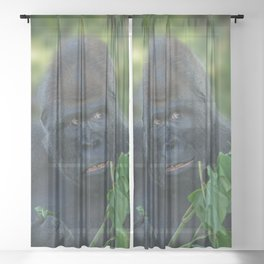 Silverback Got His Eye One Some More Leaves Sheer Curtain