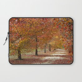 Sun Lit Tree Lined Avenue in Autumn Laptop Sleeve
