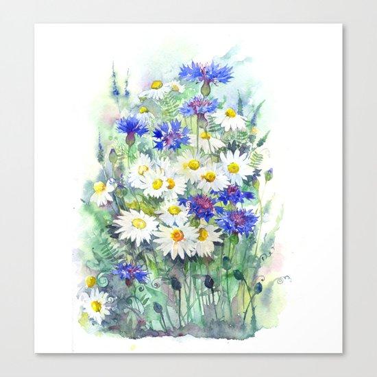 Watercolor chamomile and cornflowers Canvas Print