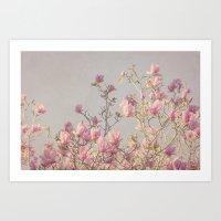 magnolia Art Prints featuring Magnolia  by Pure Nature Photos
