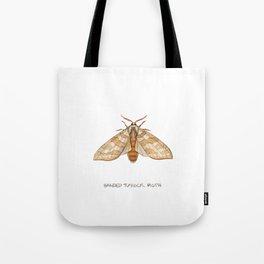 Banded Tussock Moth Tote Bag