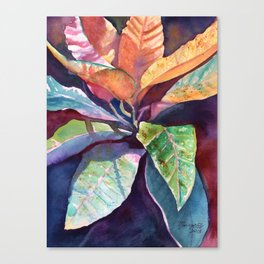 Colorful Tropical Leaves 3 Canvas Print