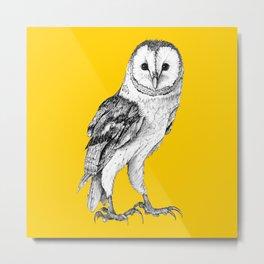 Barn Owl - Drawing In Black Pen On Vintage Yellow Metal Print