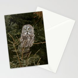 Pine Prince Stationery Cards